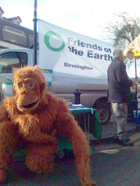 Orangutan at Moseley Farmers Market