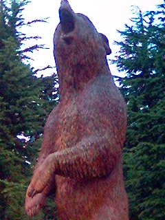 Bear carved out of a tree
