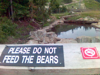 Don't give cigarettes to the bears.