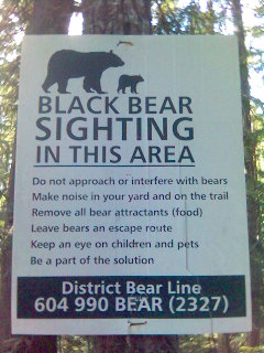 Beware the Bear...