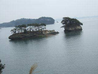 View of Pine Tree Islands